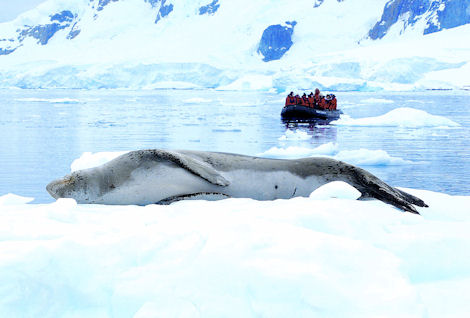 Vacations Magazine: Adventures in Antarctica: Part 1