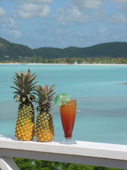 Vacations Magazine: An Authentic Taste of Antigua