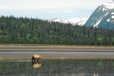 Vacations Magazine: The Thrill of Alaska